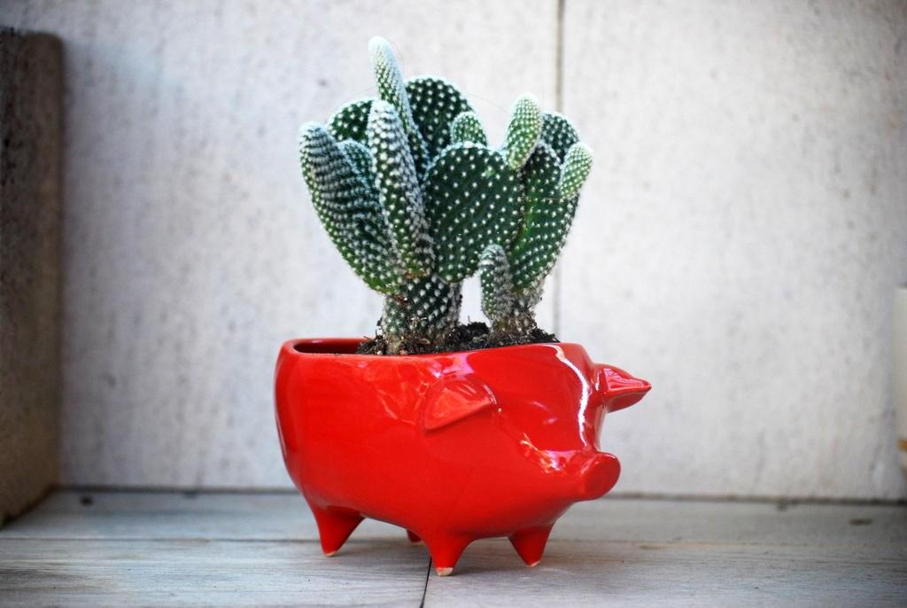 Jardinera de cer mica cerdo dise o vintage en rojo por - Jardineras de ceramica ...