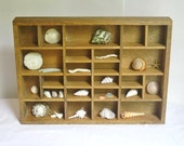 Vintage Wood Shadow Box with Sea Shells,  Wall Hanging Self Standing Rustic Primitive Natural Wood Stain Miniature Display Cubby Organizer