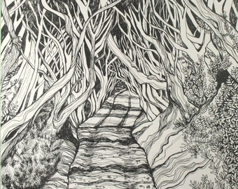 The Dark Hedges . Pen and India Ink Original Drawing . Landscape Art . Black and White Art . Beech Trees in Ireland