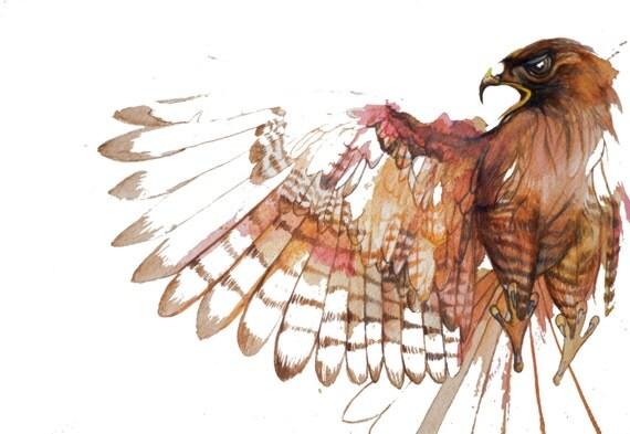 minimalist watercolor print: First Hawk