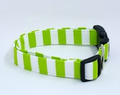 Super Cute Lime Green and Bright White Striped Dog Collar