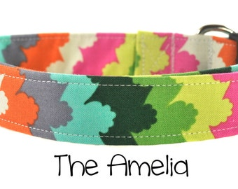Multicolored Dog Color - The Amelia