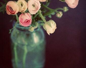 Pink Flowers on Black Background, Dark Flower Still Life Photography, Pink Ranunculus in Blue Mason Jar, Dramatic Flower Photography 8x10