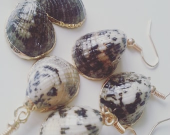 Beautiful, electroplated, goldplated, shell earrings, shell, black and white shell, choose colour, by NewellsJewels on etsy