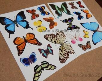 Paper Butterfly - Paper Butterfly Sheets - Butterfly paper