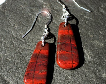Painted Desert  -  California Jasper and Sterling Silver Earrings