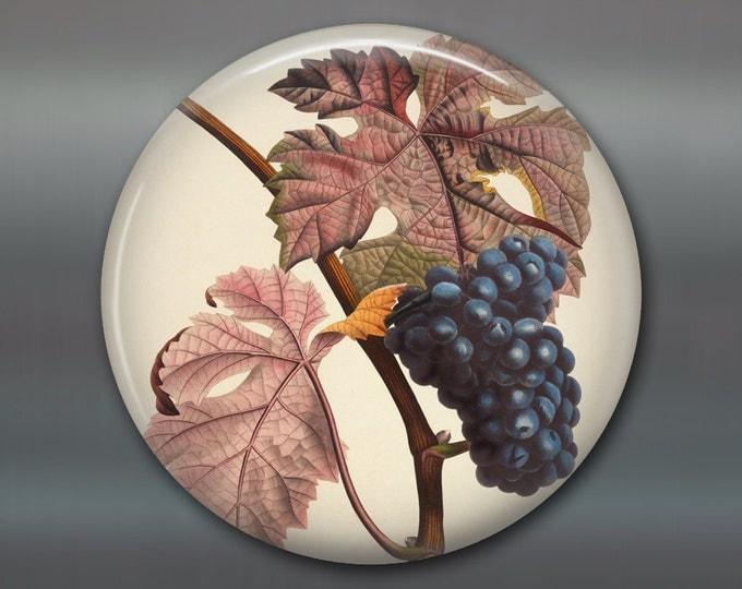 "3.5"" grapes decor, kitchen decoration, giant magnet, fruit illustration decor, decorative magnet, fruit decor, fridge magnet MA-701"