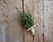 Small GREEN HERBAL Boutonniere - Perfect for your Country Wedding