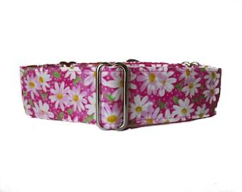 1.5 Inch Martingale Collars, Pink Martingale Collar, Pink Dog Collar, Daisy Dog Collar, Greyhound Martingale, Custom Dog Collar