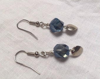 Silver Blue Leaf Earrings