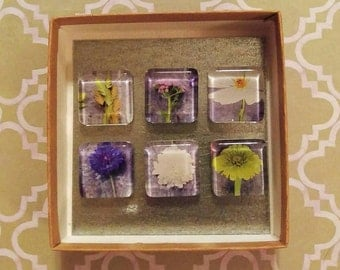 Upcycled Magnets - Simple Botanicals