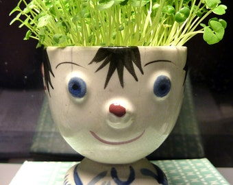 Chia Boy . . . MICRO-GREEN KITS for Growing Your Own Indoor-Vitamin-Rich Chia Garden in Mid-Century Planters