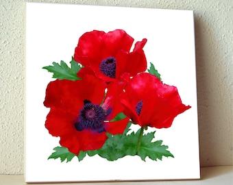 Red oriental poppy flowers ceramic tile, floral trivet, flower photo, cottage garden, wall tile, white red green 1284