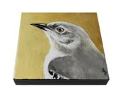 Mockingbird mini canvas painting, mocking bird art, square miniature canvas