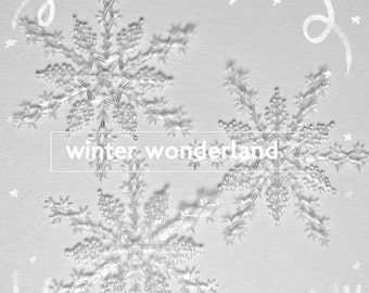 Lee Wards Snowflake Ornaments