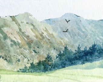 Original watercolor ACEO painting - Oregon pines