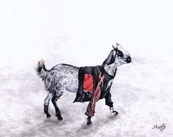 Goat wearing jacket