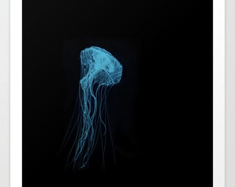 Blue Medusa Jellyfish Photography Print