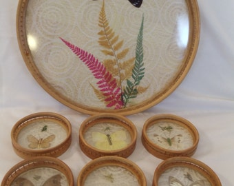 Bamboo Serving Tray with Coasters Set, Pressed Butterfly Bottom Designs