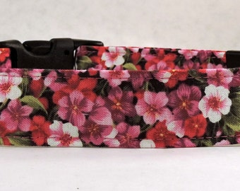 Dog Collar, Martingale Collar, Cat Collar - All Sizes  - Pansy