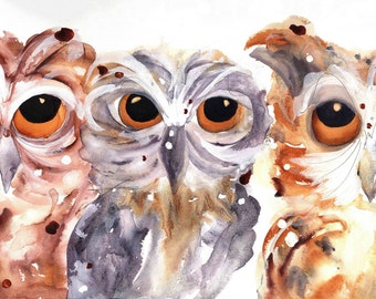 Owl Fine Art Print,  Owl Art, Three Owls Art Print