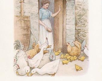 JEMIMA PUDDLE-DUCK  - Original Antique 1908 Book Plate - Beatrix Potter