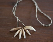 Coyote Tooth Necklace on Hemp Cord