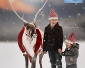 Reindeer Digital Background
