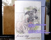 forever stay ( a best friend's song ) greyhound dog cards/ rescue greyhound/ sentimental cards/unique empathy condolence cards