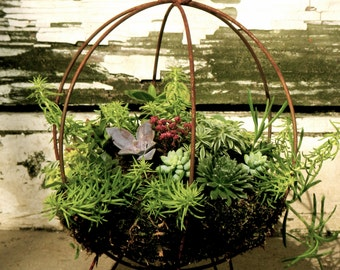 """Rustic Hanging Succulent Planter Orb - Modern Hanging or Standing - Indoor or Outdoor Geometric Planter - Large 12"""" x 12"""""""