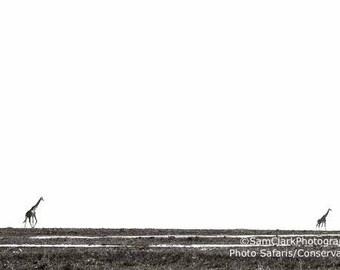 WILDLIFE PHOTOGRAPHY - Giraffe, Nursery Art, Animal Photography, African Wildlife, African Photography, Nature photography, GIRAFFE Photo