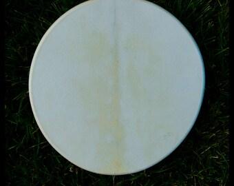 13 inch Fallow deer drum