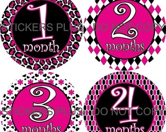 SALE Baby Girl Month Milestone Stickers  Curlz Pink Black Cheetah Flower Diamond Honeycomb Photo Prop 1-12 or 13-24 Months