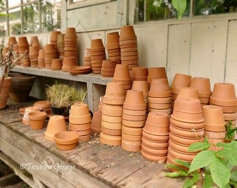 Garden Pottery Fine Art Photo Print
