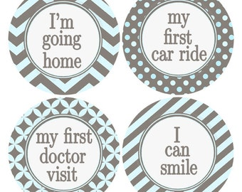 Baby Boy Milestone Sticker, Blue and Gray, My First, My 1st, Infant Sticker Gray and Blue, Infant Stickers, Baby Age Stickers (349M)