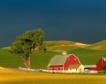 Pelouse Red Barn