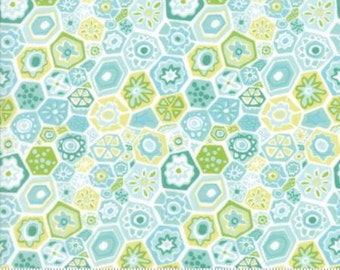 Aqua Hexagon Flowers (Milleflori) from Moda's Grand Canal Collection By Kate Spain