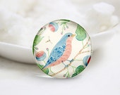 Round Glass Photo Cabochons Photo Glass Cabs-Bird (P3164)