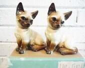 Vintage Siamese cat figurines mid century 1940's brown and cream kittehs kittens