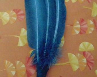 """Feather Fan  """"Summer Sale"""""""