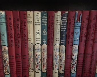 Set of 19 Happy Hollisters Books