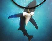 Shark Tooth Necklace, Modern Day Mako Shark tooth, Brass wire wrapped, Leather cord