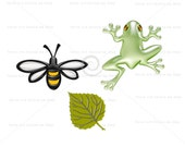 Bee / frog / leaf clipart set, digital graphic, instant download, colorful clipart for scrapbooking crafts, cute clipart