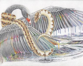 Black Swan and The Snake,, 9x12 marker, drawing and illustration, art & collectibles earthspalette