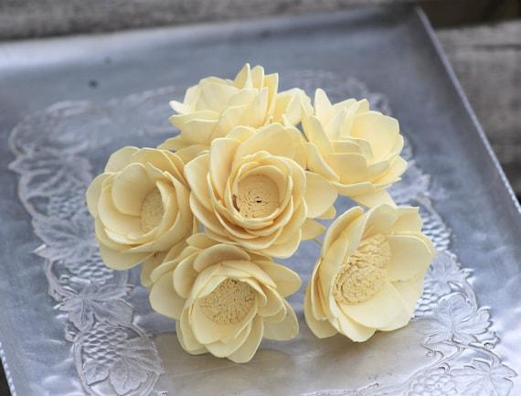 Sola Flower Camellia Set Of 6 Stemmed Sola Wood Flowers