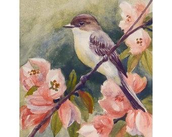 Eastern Phoebe Bird Print Watercolor Wall Art Bird Decor by Janet Zeh