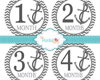 Monthly Baby Stickers - Baby Shower Gift and Photo Prop - nautical - anchor - 211 - gray and white