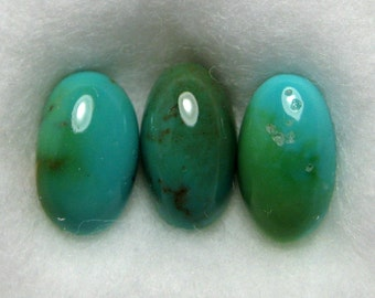 Dyer Blue Mine Natural Turquoise Cabochons from Nevada, 1.86 cttw.