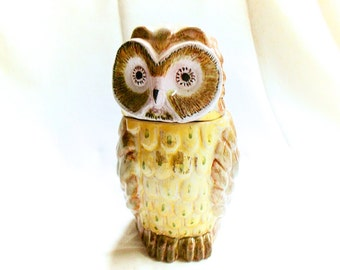 French Vintage Ceramic Hand Painted Owl Candy Jar (C039)