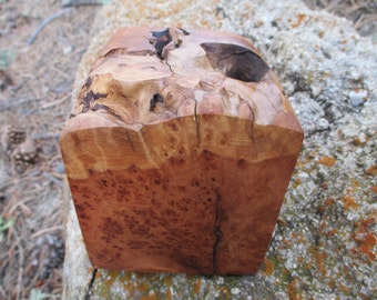 Alligator Juniper Wood Burl Pet Urn or Memorial Keepsake